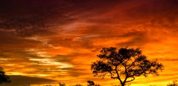 Refúgio romântico: lua de mel na África do Sul