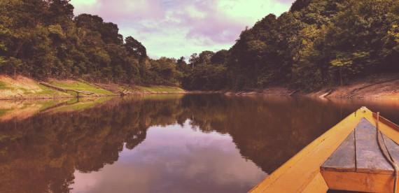 Amazônia, um paraíso de cultura e conhecimento