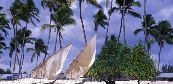 O que a ilha de Zanzibar tem a nos ensinar