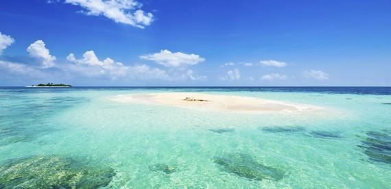 Já pensou em nadar nas Bahamas?
