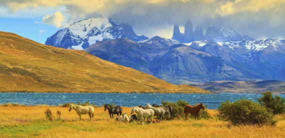 As vantagens de ir à Patagônia no verão