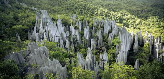 Os incríveis Pináculos de Borneo