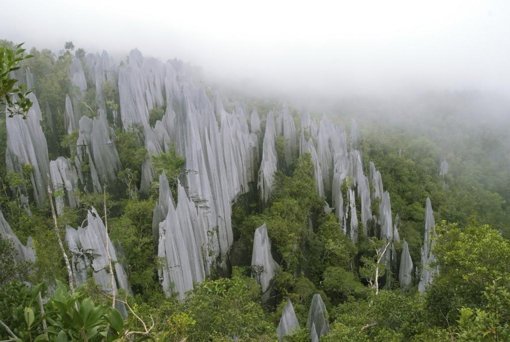 Pináculos de Borneo