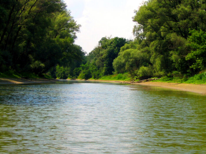 Parque Nacional Donau-Auen