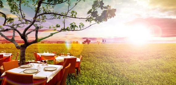7 países perfeitos para vegetarianos