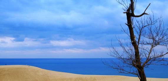 As belas dunas de areia em Tottori no Japão