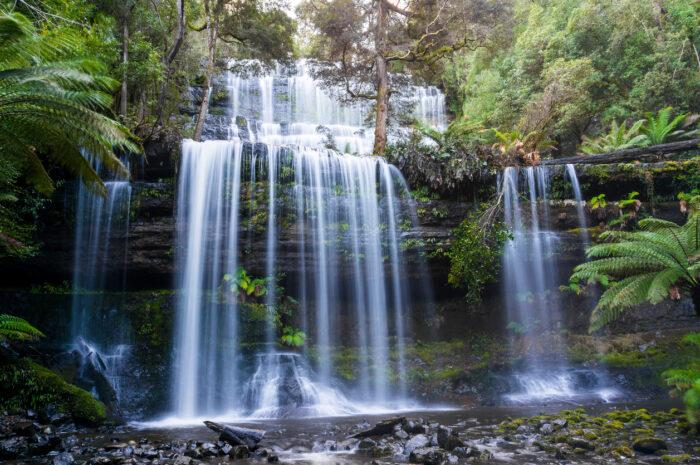 Catarata Russell em Monte Campo Nacional Park, Tasmânia