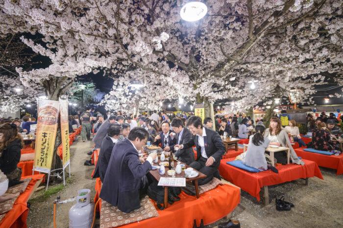 "<img src=""kyoto-japao-hanami-festival.jpg"