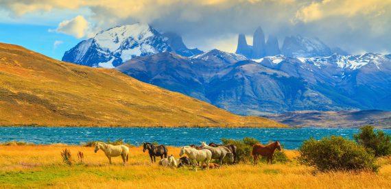 5 Segredos da Patagônia Chilena