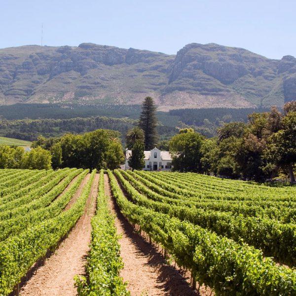 Franschhoek é uma cidadezinha charmosa no coração das Winelands da África do SUl
